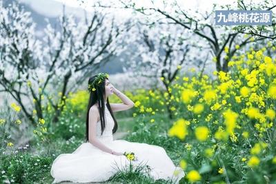 【九峰花海3天】广东最美春天--乐昌九峰桃花源--丹霞巴寨奇观三日游